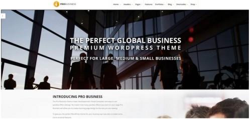Pro Business Theme
